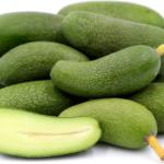 Pitloze avocado