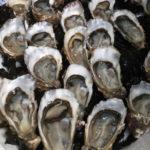 Culinaire reistip – Bezoekerscentrum Fines de claires oesters