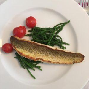 Pieterman vis uit Noordzee