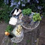 De vrije lente viert feest in tuin en aan tafel.